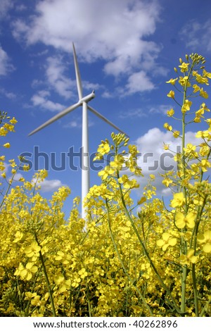 Yellow rapeseed and wind engine as alternative energy - stock photo