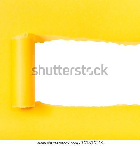 yellow rolled-up torn paper on white isolated square background