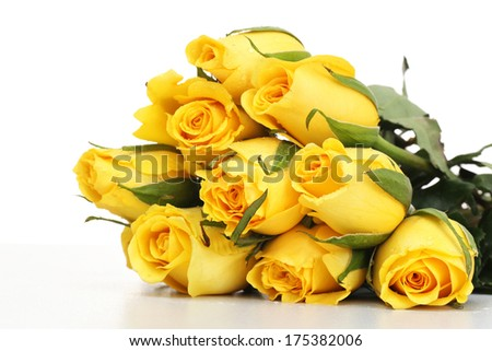 Yellow roses isolated - stock photo