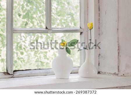 yellow roses on windowsill - stock photo
