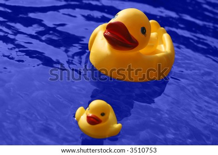 Yellow rubber duck family and blue water. (with clipping path) - stock photo