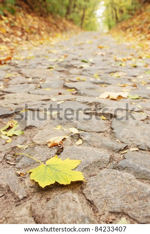 Yellow sheet lies on the road from the stone - stock photo