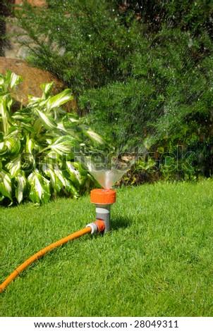 Yellow sprinkler watering the backyard garden. - stock photo