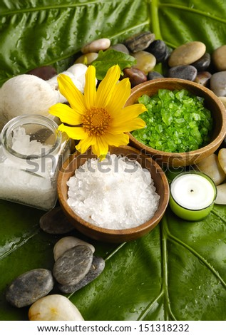 Yellow Sunflower and stones on green banana leaf - stock photo