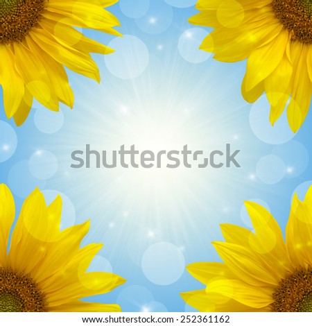 Yellow sunflowers in the sunlight at the corners square border isolated on green background - stock photo