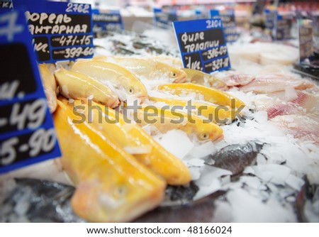 Yellow trout on fish market display, TM's removed from tags - stock photo