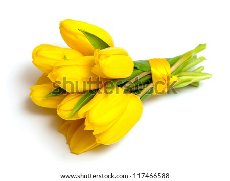 yellow tulips tied up with a ribbon isolated on white background
