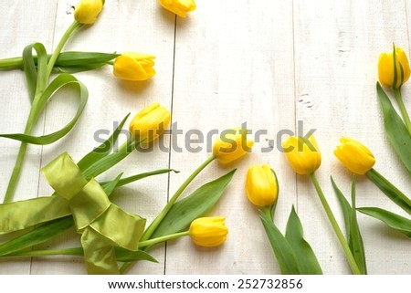 Yellow tulips with yellow green ribbon on white wooden background.Image of spring season - stock photo