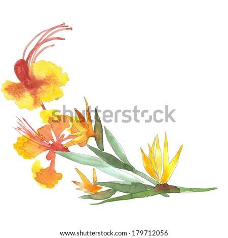 Yellow watercolor flowers branch - stock photo