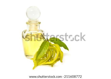 ylang-ylang aroma massage oil - stock photo