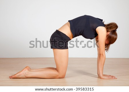 yoga cat pose   stock photo
