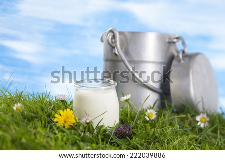 Yogurt and Old style milk jug on the grass with flowers  the sky with clouds on the background. - stock photo