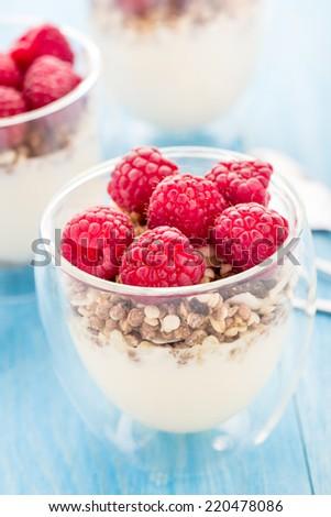 Yogurt with muesli and fresh raspberries - stock photo