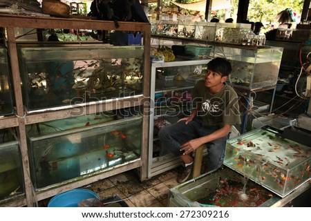 YOGYAKARTA, INDONESIA - JULY 31, 2011: Vendor sells aquarium fishes at the Pasar Ngasem Market in Yogyakarta, Central Java, Indonesia. - stock photo