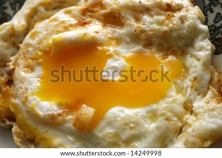 yolk - stock photo