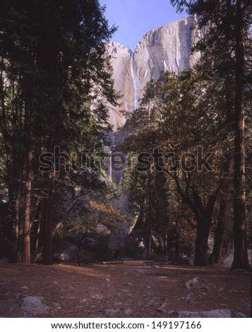 Yosemite National Park, CA, a portion of the Sierra Nevada mountain range along the eastern flank of CA/ Yosemite/ It is wildness that is protected in Yosemite, the animals, trees, and rock forms. - stock photo