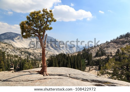 Yosemite National Park: Olmsted Point -The view from Olmsted Point at Yosemite national Park including Half Dome in the background.