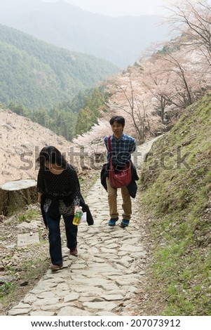 YOSHINO, JAPAN - April 17th : Tourists walking at Yoshino Mountain path Oku-Senbon, Yoshino, Nara, Japan on April 17th, 2014.