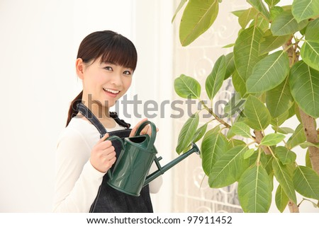 Young Asian woman watering plants indoors - stock photo