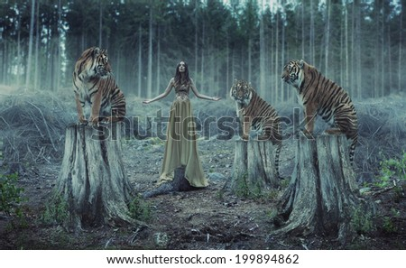 Young attractive and sensuality woman with tigers - stock photo