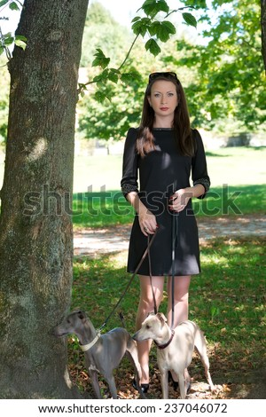 Young attractive girl   standing with two greyhounds in the park