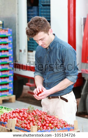 Young attractive man at grocery choosing tomatoes