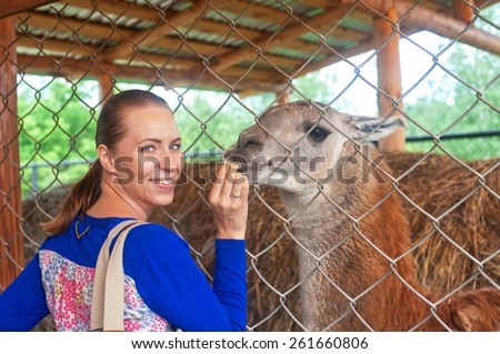 Young attractive woman feeding lama - stock photo