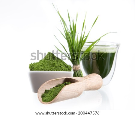 Young barley and chlorella spirulina. Detox superfood. - stock photo