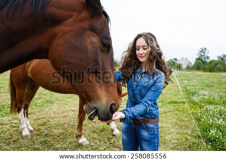 Young beautiful girl feeding a horse at summer time - stock photo