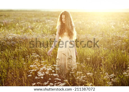 Young beautiful girl on a summer field. Beauty summertime. Fashion photo - stock photo