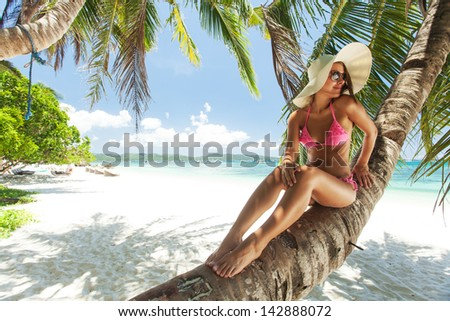 Young beautiful woman sitting on the palm tree - stock photo