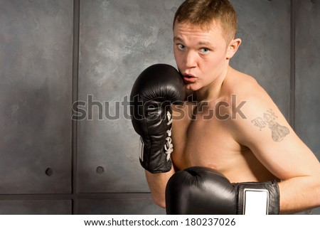 Young boxer with a tattoo working out squaring off with a look of determination and concentration as he raises his gloved fists against a grey background - stock photo