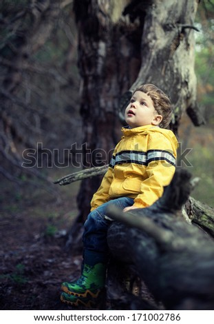 young boy at the forest  - stock photo