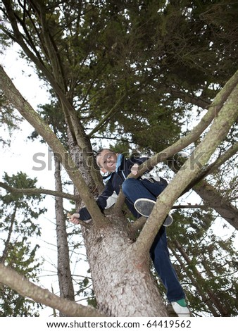 Young Boy climbing a tree in the forest - stock photo