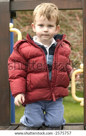 Young boy having just climbed a ladder on his climbing frame
