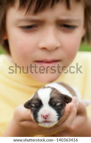 Young boy holding newborn puppy dog with great care - closeup, shallow depth - stock photo