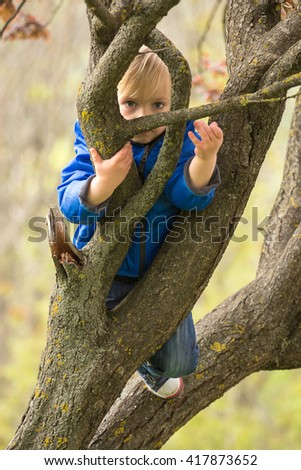 Young boy hugging a tree branch, spring time