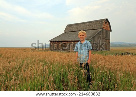 Young boy in a rural field with a rustic barn, Wyoming, USA. - stock photo