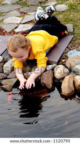 Young boy laying petting fish in backyard pond