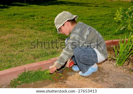 Young boy pulling weeds in a garden
