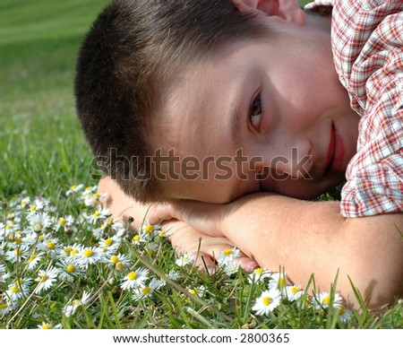 Young boy relaxing on a bed of daisies - stock photo