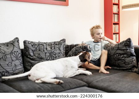 Young boy watching TV with his Dog - stock photo