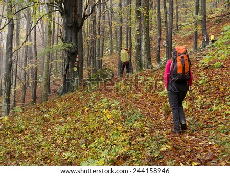Young brunette girl trekking in Mehedinti Mountains, Romania, Europe