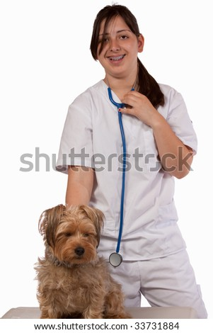 Young brunette hispanic Animal nurse or Veterinarian examining a pet Yorkshire Terrier Dog - stock photo