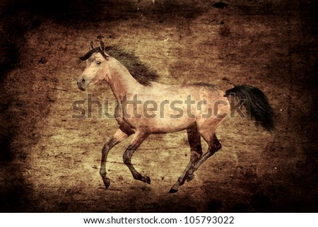 Young buckskin stallion. Vintage style, grungy effect. - stock photo