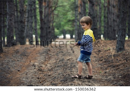 young child boy in forest