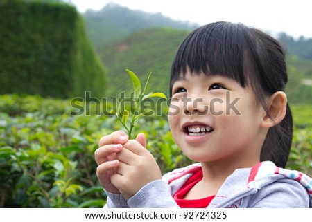 Young child holding a tea leaf in her hand - stock photo