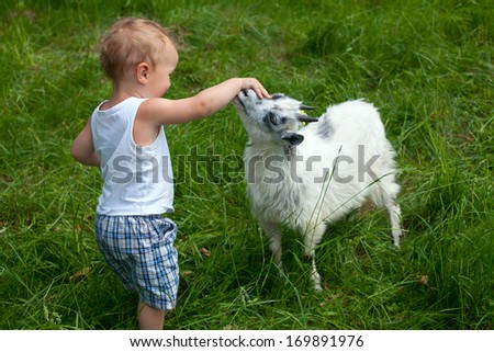 Young child petting a young goat.