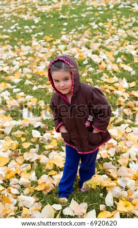 Young child standing in autumn leaves.