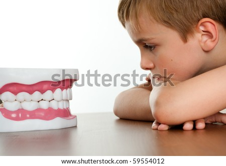 Young Child Staring at Fake Jaw at Dental Office - stock photo